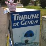 Piggie in Geneva!