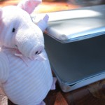 Piggie consoles me and my bruised laptop